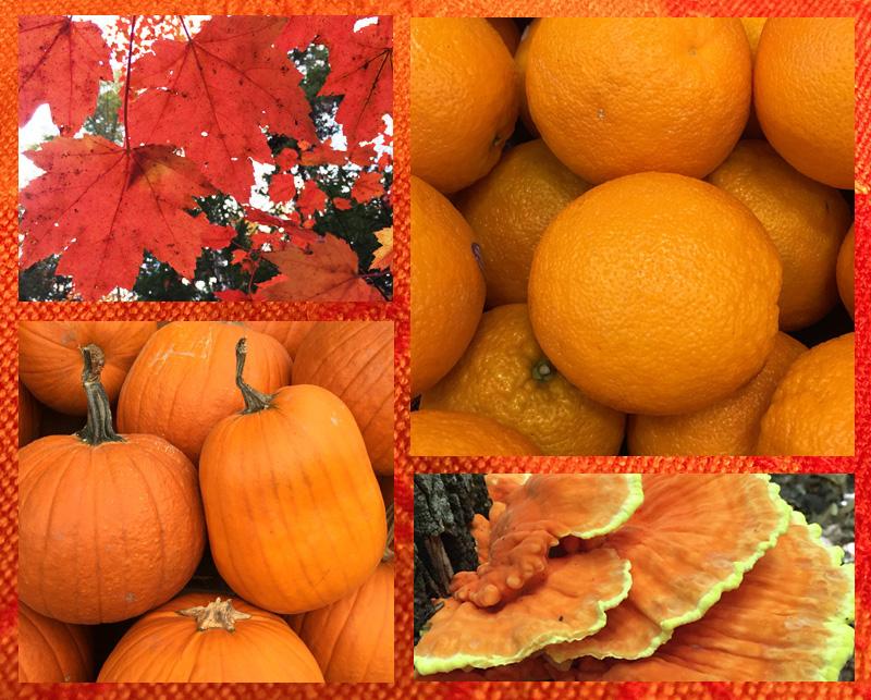 orange-board1a