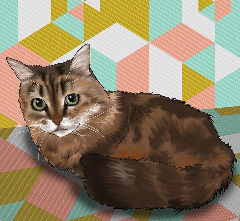 rebeccas-cat
